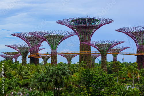 Park Gardens by the Bay - Singapore