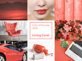 Collage Color of the year 2019 Living Coral. Livingcoral - 237588590