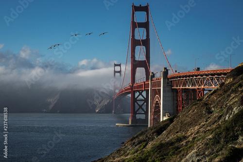 The Golden Gate Pelicans