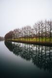 Bäume am Fluss beim trüben Wetter - 237623956