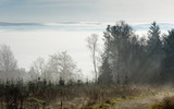 fog in the valley - 237626106