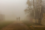 Young people traveling in the Park in morning fog. - 237631740