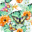 Hawaiian flowers, butterflies, watercolor, exotic plants, isolated on a white - 237662130