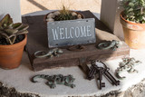 Metal Sign Welcome on the old well with wooden lid