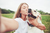 Attractive young woman with labrador outdoors. Woman on a green grass with dog labrador retriever - 237757743