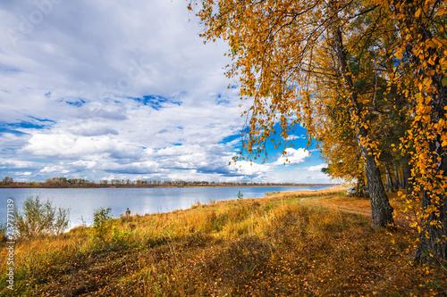Foto Murales Autumn landscape on the river. Western Siberia, Novosibirsk region, Russia