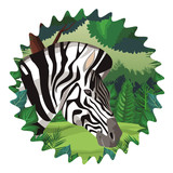 Zebra wild animal © Jemastock