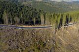 Deforestation aerial drone shot - 237893720