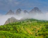 beautiful green mountain valley scene in a dense mist