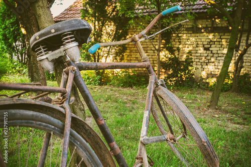 Rusty old bicycle standing beside the tree in the backyard