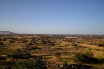 die weite der serengeti