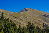 forest mountain ridge nature landscape panorama view from below meadow with many pine trees