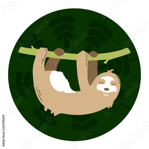 Sloth hanging on a branch in a green background
