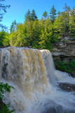 Blackwater Falls State Park West Virginia