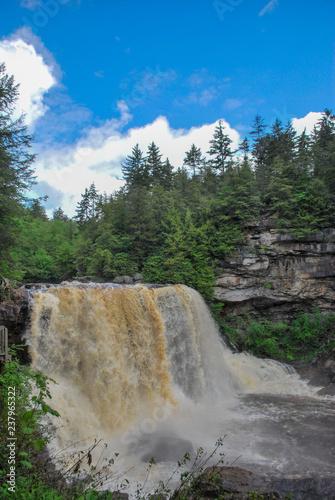 Blackwater Falls State Park West Virginia  - 237965322