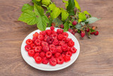 The fresh red bright raspberry berries on a white plate and raspberry branches on a brown wooden surface in the garden in summer