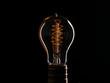 Edison's light bulb illuminates from electric current