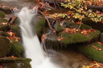 Mountain stream in autumn © yushel