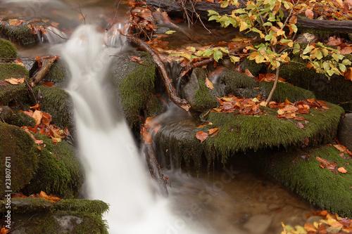 Mountain stream in autumn - 238076711