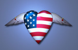 Pinned Freedom Heart - 238078955