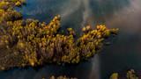 une forêt d'arbre aux couleurs d'automne au milieu d'un lac, en vue aérienne © Olivier Tabary