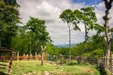 Landscape of a rural farm - 238120947