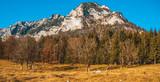 Beautiful alpine view near the Hintersee-Ramsau-Bavaria-Germany