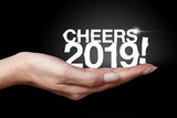 Cheers year 2019 with hand. - 238134703