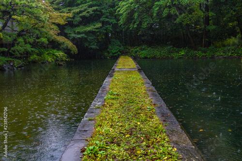 紅葉のはじまる、秋雨に濡れる小石川後楽園