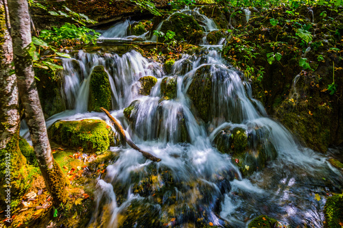 Waterfall in a thick forest