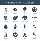 plant icons. Trendy 16 plant icons. Contain icons such as wheat, flower, tree, tomato, potato, mushroom, berry, flower pot, carrot, rose, leaf. plant icon for web and mobile.