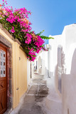 The colourful small streets of Emporio, Santorini, Greece are even more beautiful with the flowers of the bougainvillea that hang over the walls - 238194721