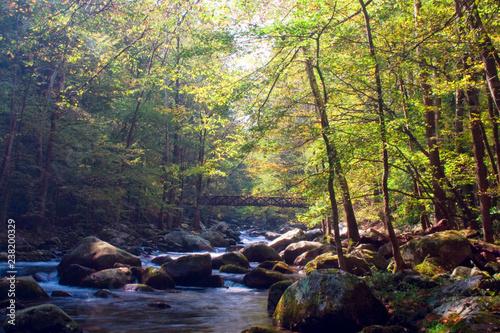 Foto Murales River, Rocks, and a Bridge