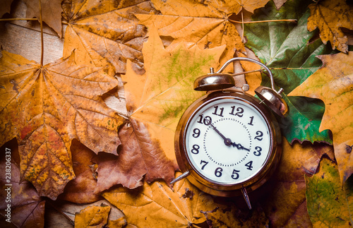 fototapeta na ścianę Vintage alarm clock and maple leaves on wooden background