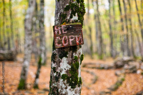 A sign in a forest - Do Not Litter