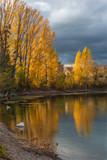 paysage d'automne à vernouillet à l'ouest de Paris - 238230941