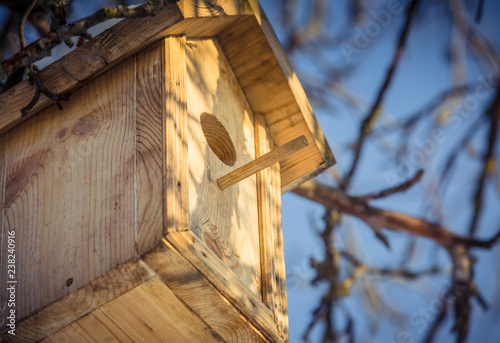 Foto Murales Birdhouse in a tree in winter