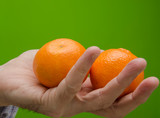 hand with two tangerines on green background