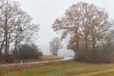 Straße im Nebel, Herbst