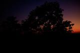 Beautiful sunrise.