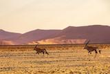 2018-10 Namibia