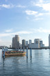 東京ベイエリア 豊洲、越中島の風景