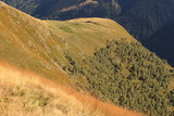 Alpine Landschaft im Valle Albano