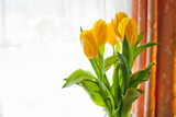 bouquet of yellow tulips on white background with copy space for text