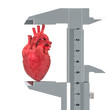 Human heart with vernier caliper. Research and diagnosis of heart concept, 3D rendering