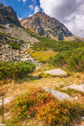 Mountain landscape, The Mlynicka valley of High Tatras National Park, Slovakia, Europe.