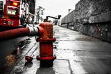 Detroit Fire Hydrant