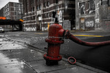 fire hydrant in the street