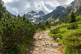 Amazing Summer landscape of Malyovitsa peak, Rila Mountain, Bulgaria