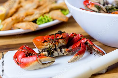 crab - 238468905